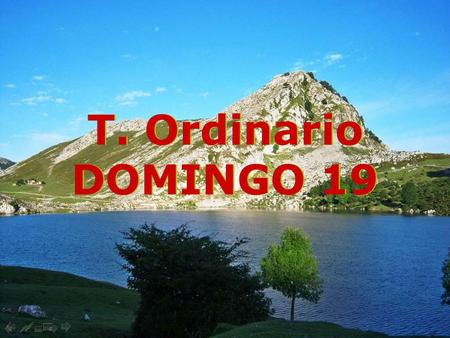 T. Ordinario DOMINGO 19.