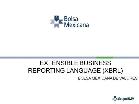REPORTING LANGUAGE (XBRL)