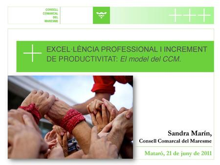 EXCEL·LÈNCIA PROFESSIONAL I INCREMENT