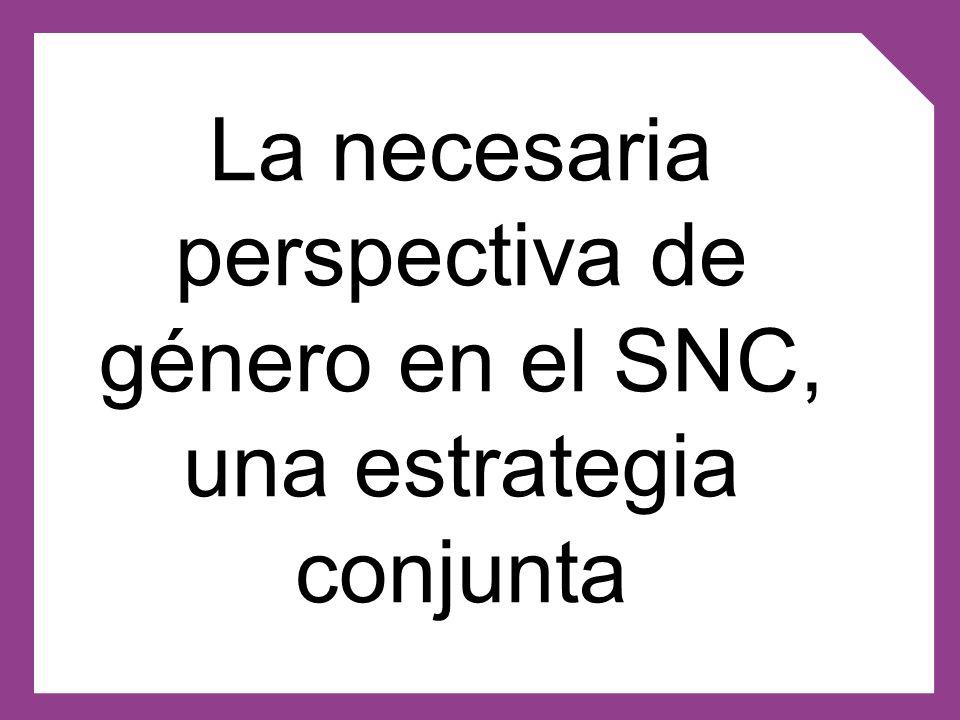 El Inmujeres (en base a sus cometidos y al PIODNA) y el Consejo Nacional de Género.