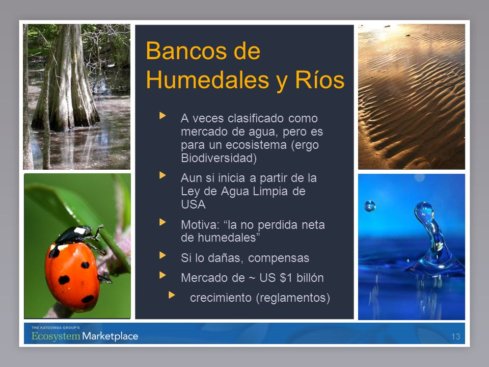Bancos de Humedales y Ríos