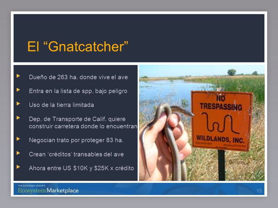 El Gnatcatcher Dueño de 263 ha. donde vive el ave