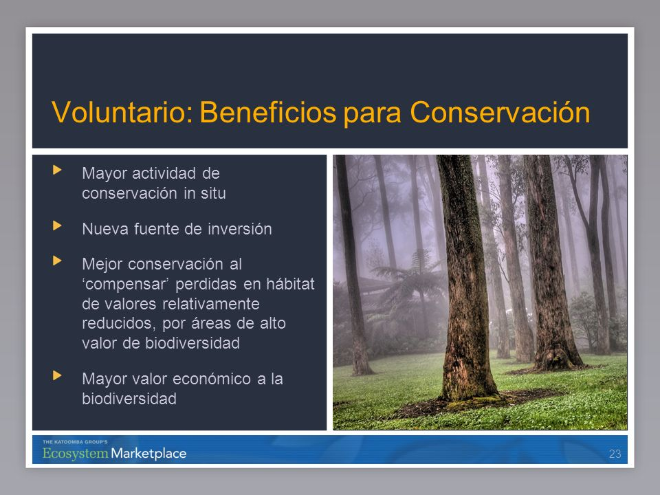 Voluntario: Beneficios para Conservación