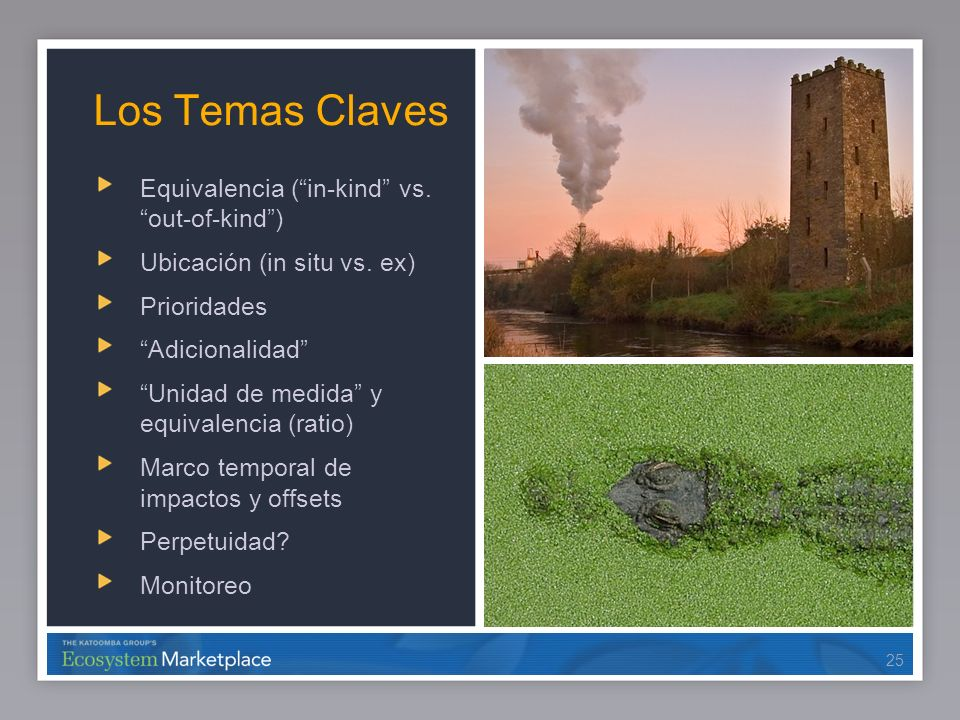 Los Temas Claves Equivalencia ( in-kind vs. out-of-kind )