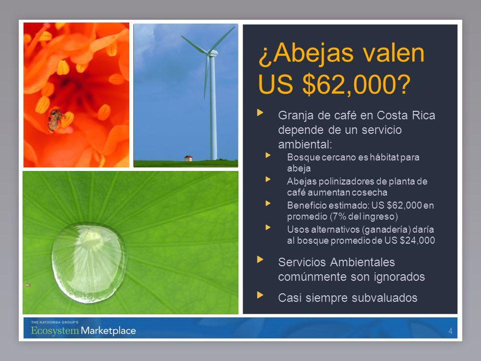 ¿Abejas valen US $62,000 Granja de café en Costa Rica depende de un servicio ambiental: Bosque cercano es hábitat para abeja.