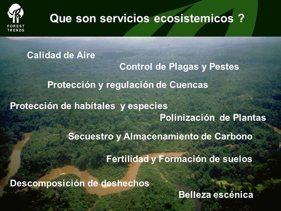 Que son servicios ecosistemicos