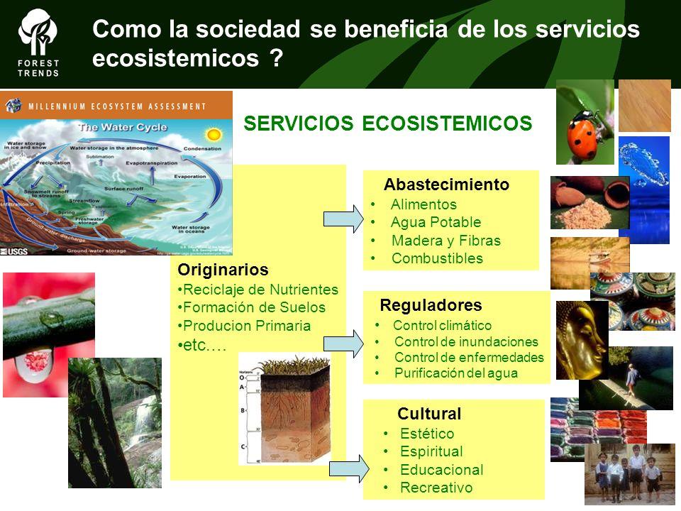 Como la sociedad se beneficia de los servicios ecosistemicos