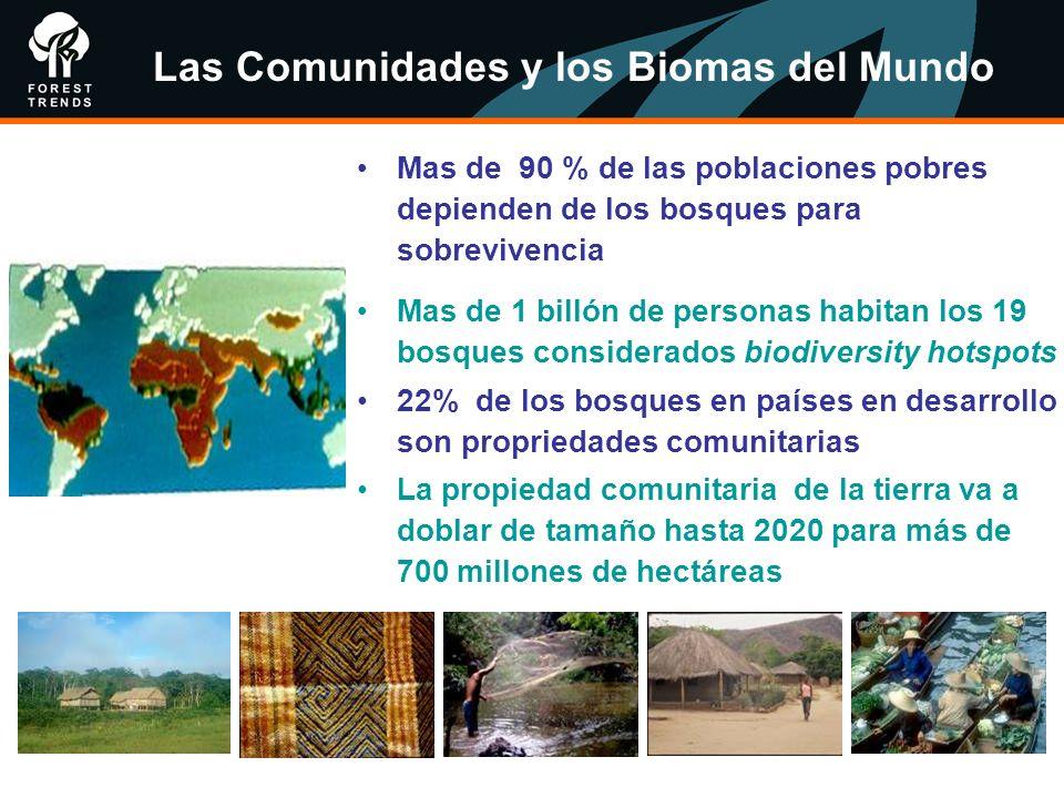 Las Comunidades y los Biomas del Mundo