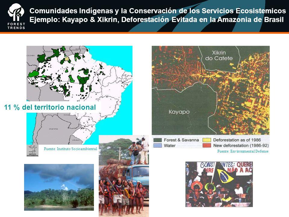 Comunidades Indígenas y la Conservación de los Servicios Ecosistemicos