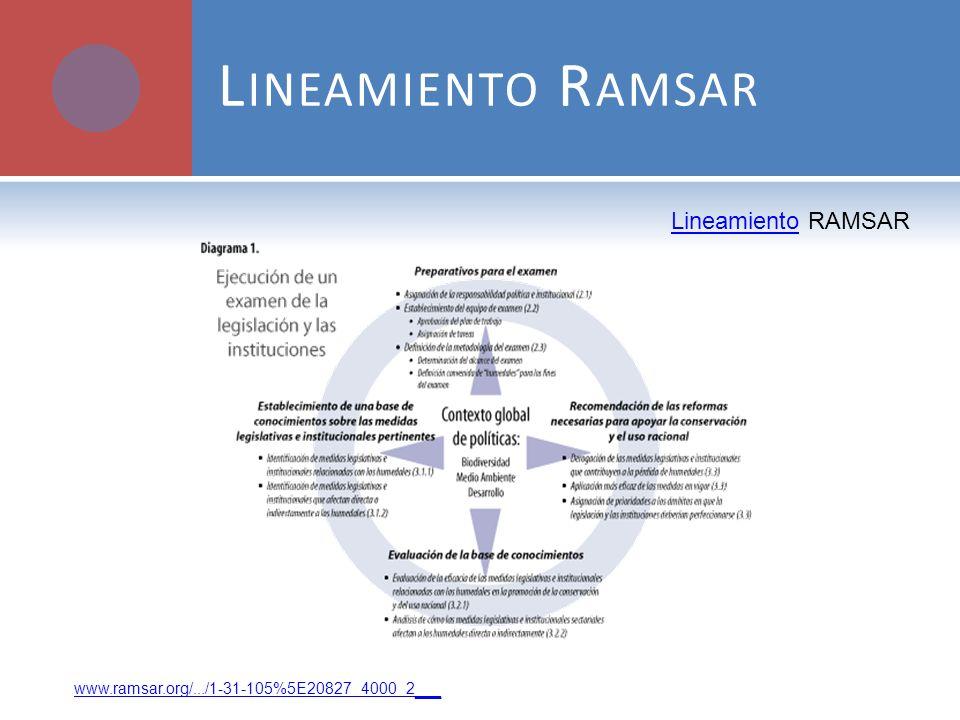 Lineamiento Ramsar Lineamiento RAMSAR
