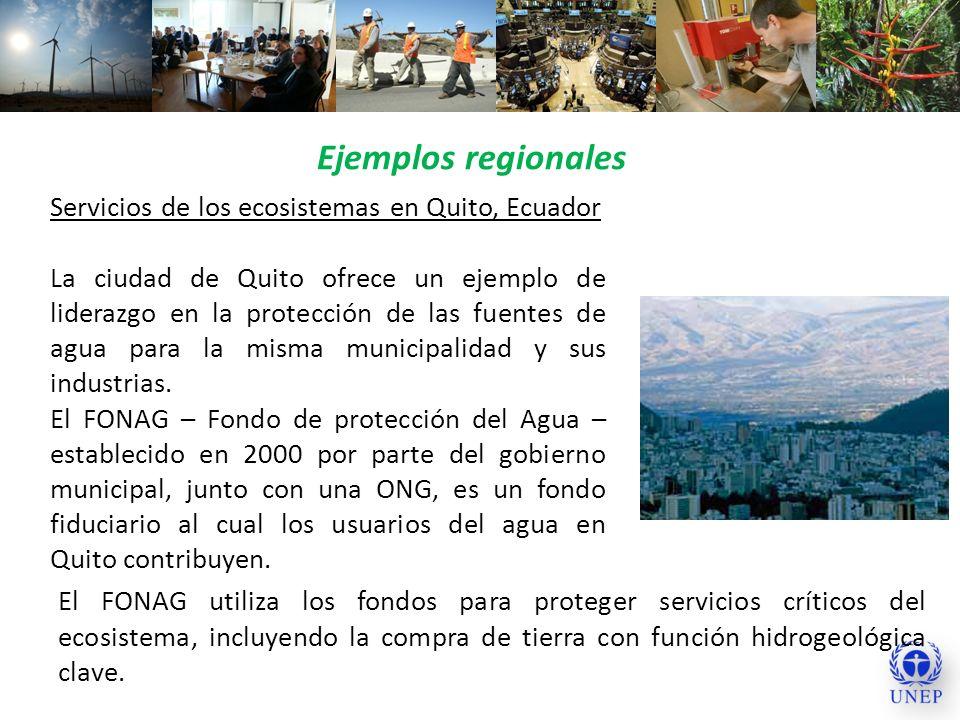 Ejemplos regionales Servicios de los ecosistemas en Quito, Ecuador
