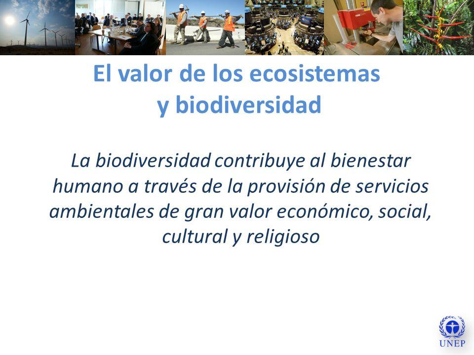 El valor de los ecosistemas y biodiversidad