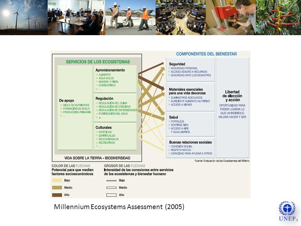 Millennium Ecosystems Assessment (2005)