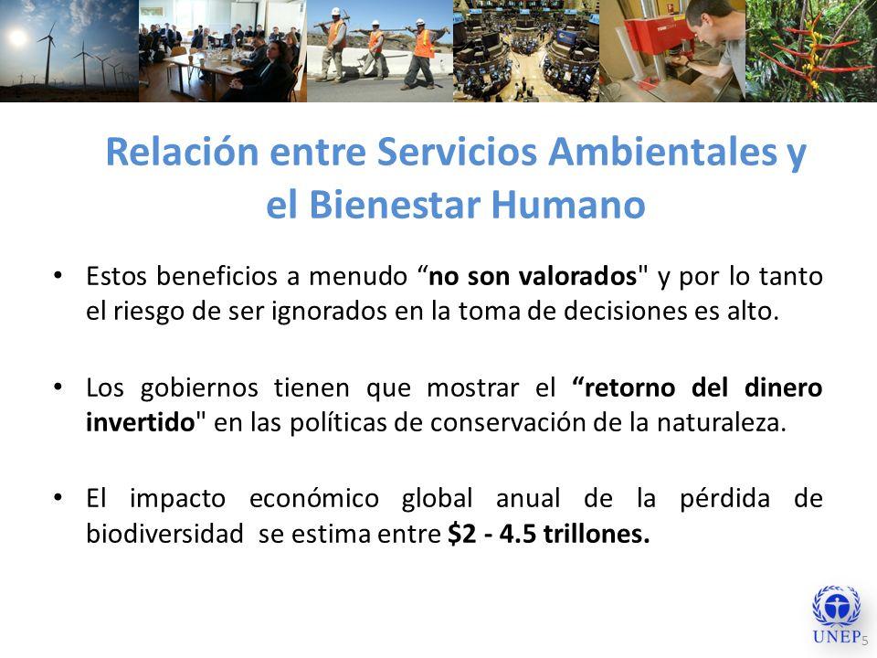 Relación entre Servicios Ambientales y el Bienestar Humano