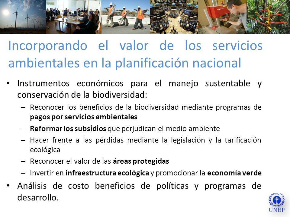 Incorporando el valor de los servicios ambientales en la planificación nacional