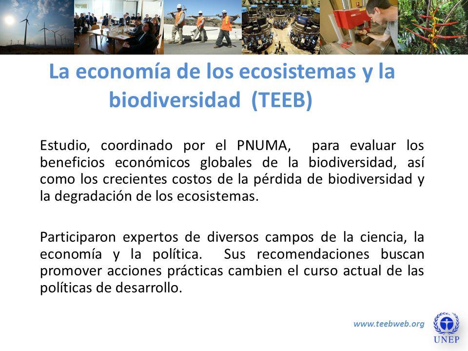 La economía de los ecosistemas y la biodiversidad (TEEB)