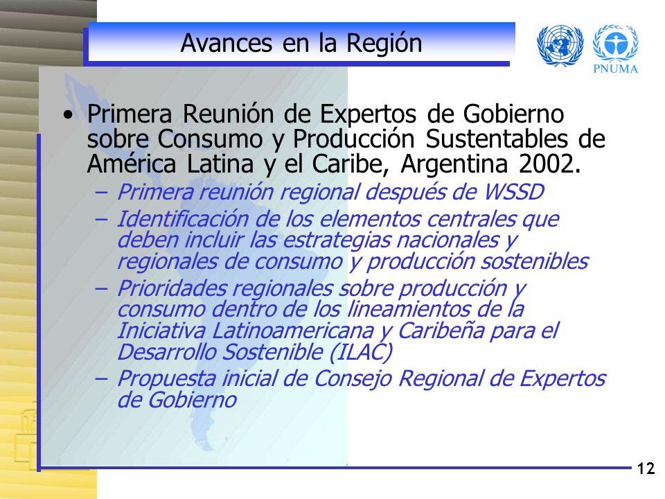 Avances en la Región Primera Reunión de Expertos de Gobierno sobre Consumo y Producción Sustentables de América Latina y el Caribe, Argentina 2002.