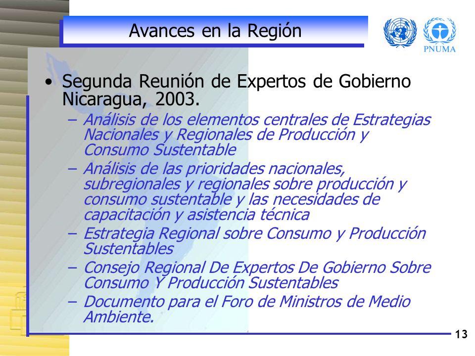 Segunda Reunión de Expertos de Gobierno Nicaragua, 2003.