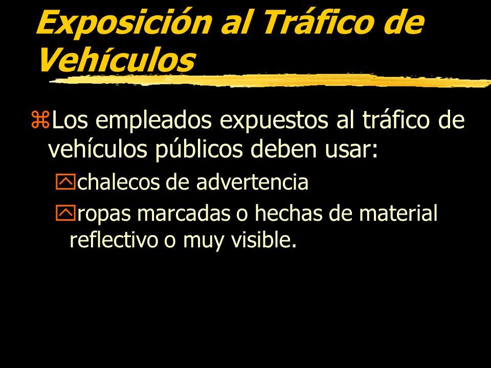 Exposición al Tráfico de Vehículos