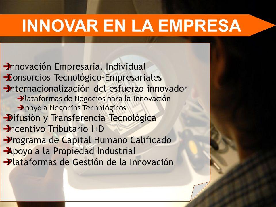 INNOVAR EN LA EMPRESA Innovación Empresarial Individual
