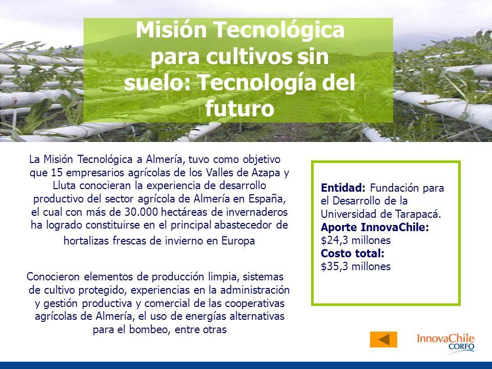 Misión Tecnológica para cultivos sin suelo: Tecnología del futuro