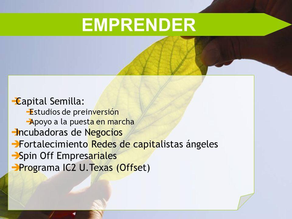 EMPRENDER Capital Semilla: Incubadoras de Negocios
