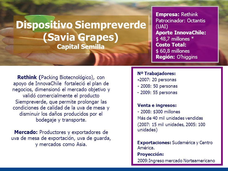 Dispositivo Siempreverde (Savia Grapes) Capital Semilla