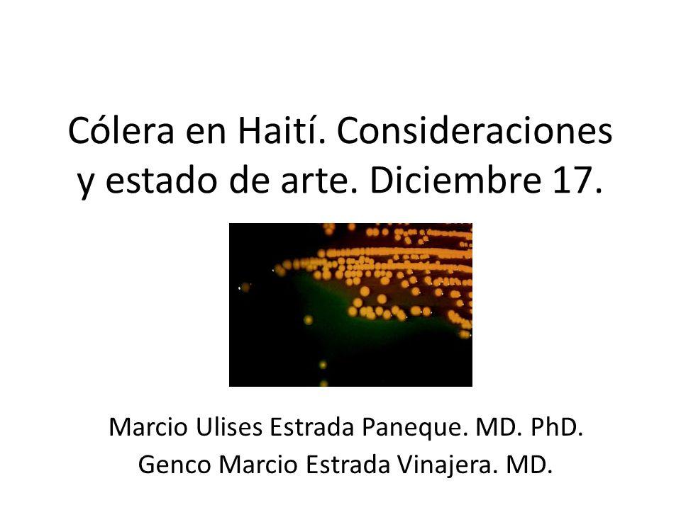 Cólera en Haití. Consideraciones y estado de arte. Diciembre 17.