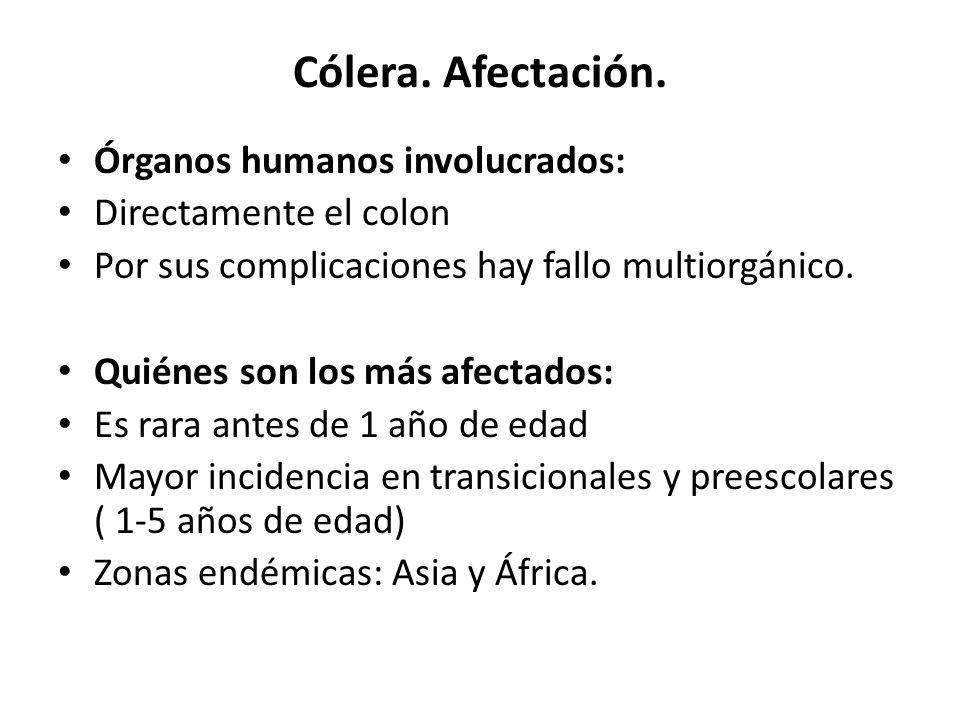 Cólera. Afectación. Órganos humanos involucrados: