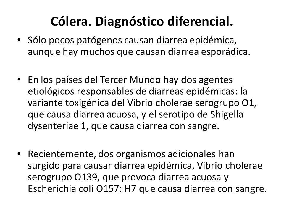 Cólera. Diagnóstico diferencial.