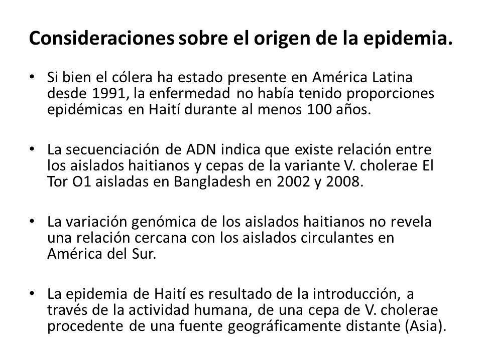 Consideraciones sobre el origen de la epidemia.