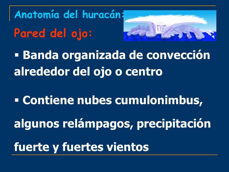Banda organizada de convección alrededor del ojo o centro