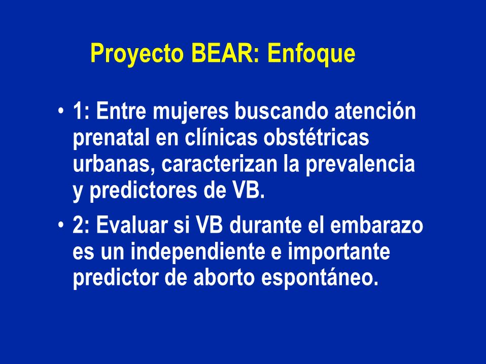 Proyecto BEAR: Enfoque
