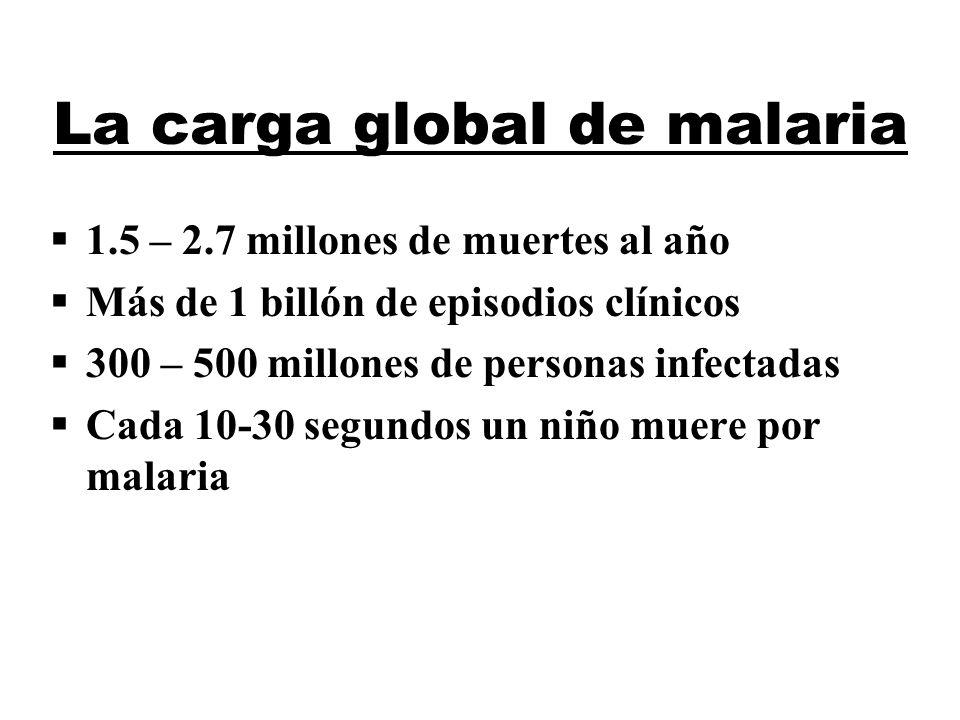 La carga global de malaria
