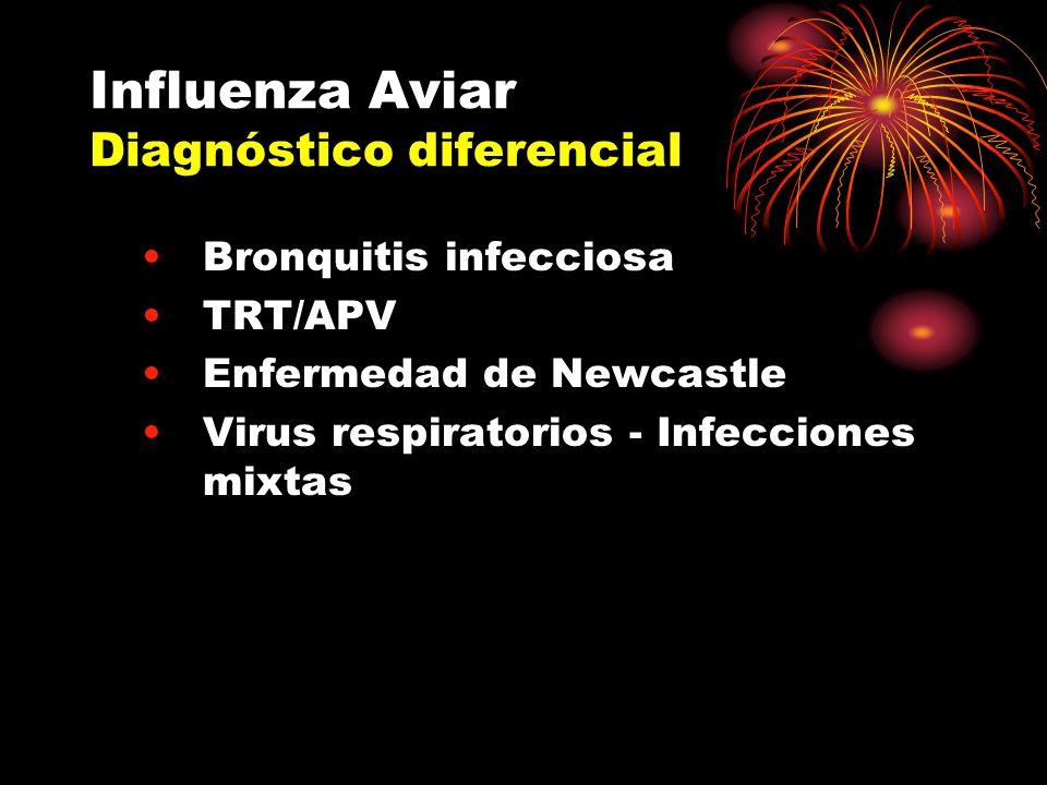 Influenza Aviar Diagnóstico diferencial