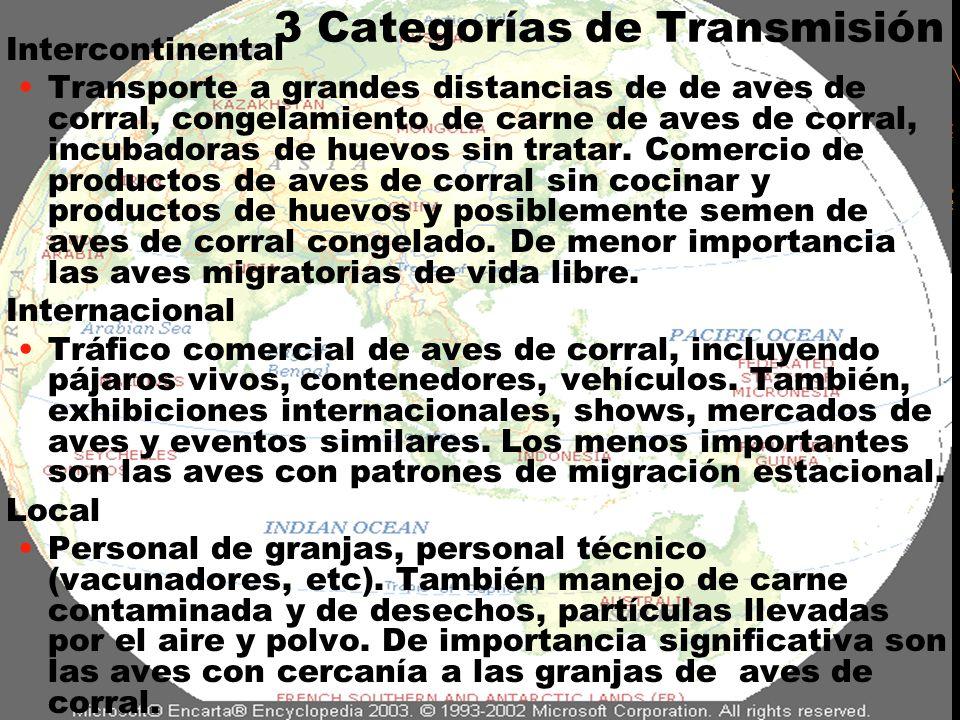 3 Categorías de Transmisión