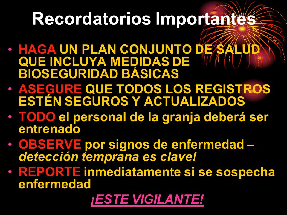 Recordatorios Importantes