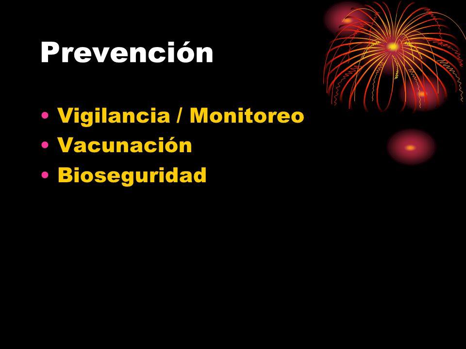 Prevención Vigilancia / Monitoreo Vacunación Bioseguridad