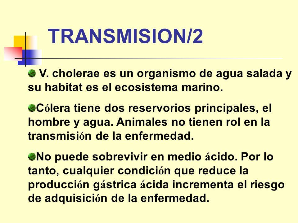 TRANSMISION/2 V. cholerae es un organismo de agua salada y su habitat es el ecosistema marino.