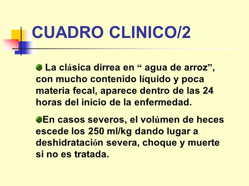 CUADRO CLINICO/2
