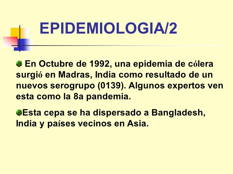 EPIDEMIOLOGIA/2
