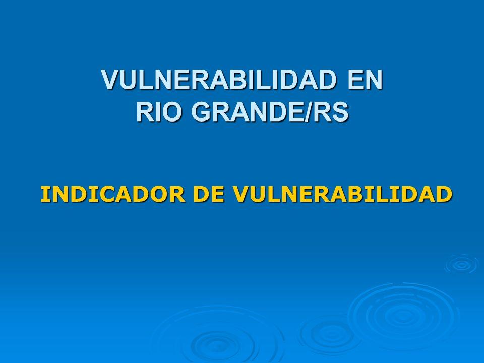 VULNERABILIDAD EN RIO GRANDE/RS