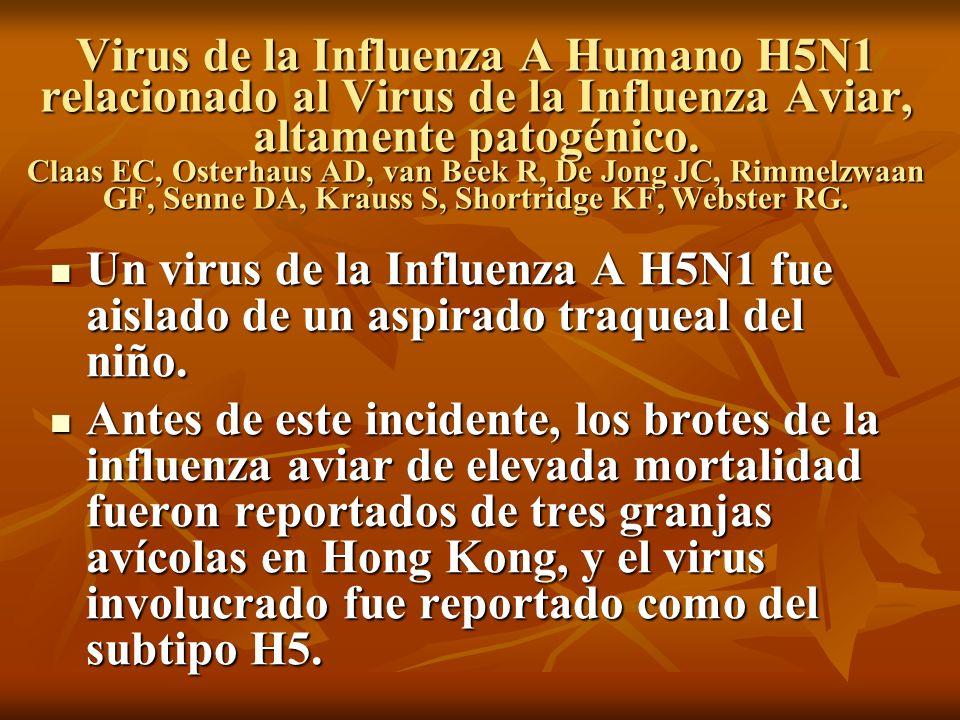 Virus de la Influenza A Humano H5N1 relacionado al Virus de la Influenza Aviar, altamente patogénico. Claas EC, Osterhaus AD, van Beek R, De Jong JC, Rimmelzwaan GF, Senne DA, Krauss S, Shortridge KF, Webster RG.