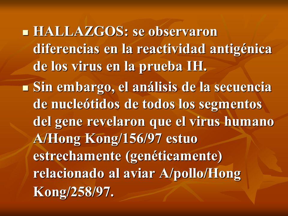 HALLAZGOS: se observaron diferencias en la reactividad antigénica de los virus en la prueba IH.