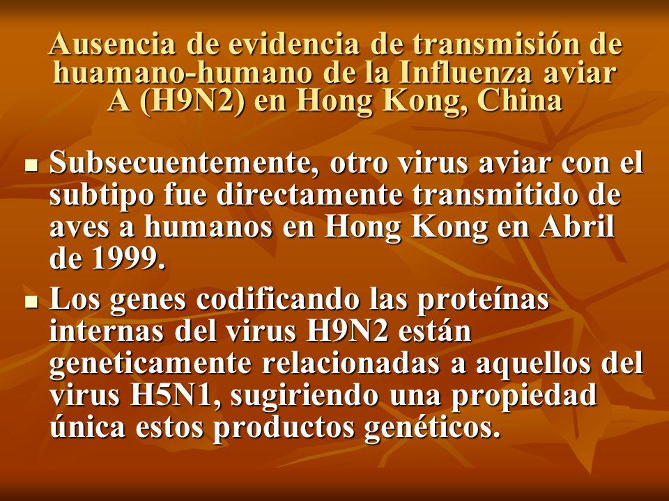 Ausencia de evidencia de transmisión de huamano-humano de la Influenza aviar A (H9N2) en Hong Kong, China