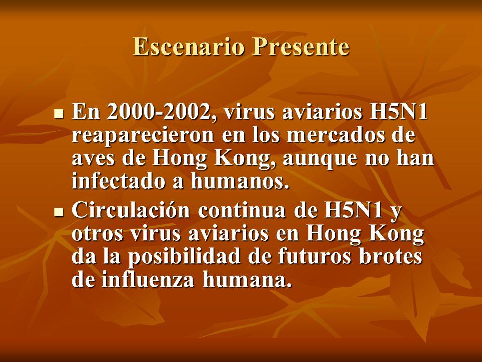 Escenario Presente En 2000-2002, virus aviarios H5N1 reaparecieron en los mercados de aves de Hong Kong, aunque no han infectado a humanos.