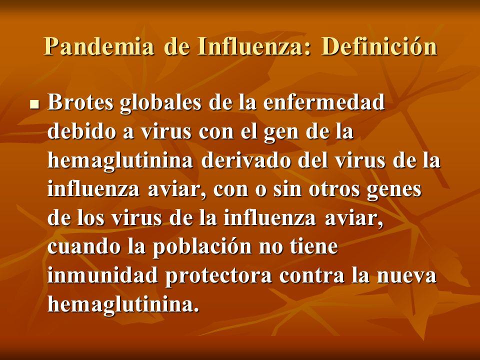 Pandemia de Influenza: Definición