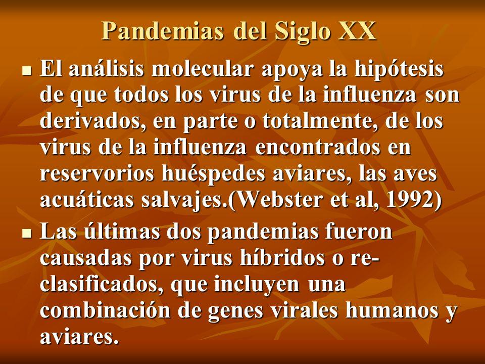 Pandemias del Siglo XX