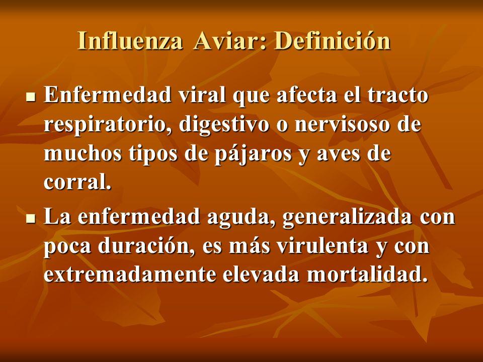 Influenza Aviar: Definición