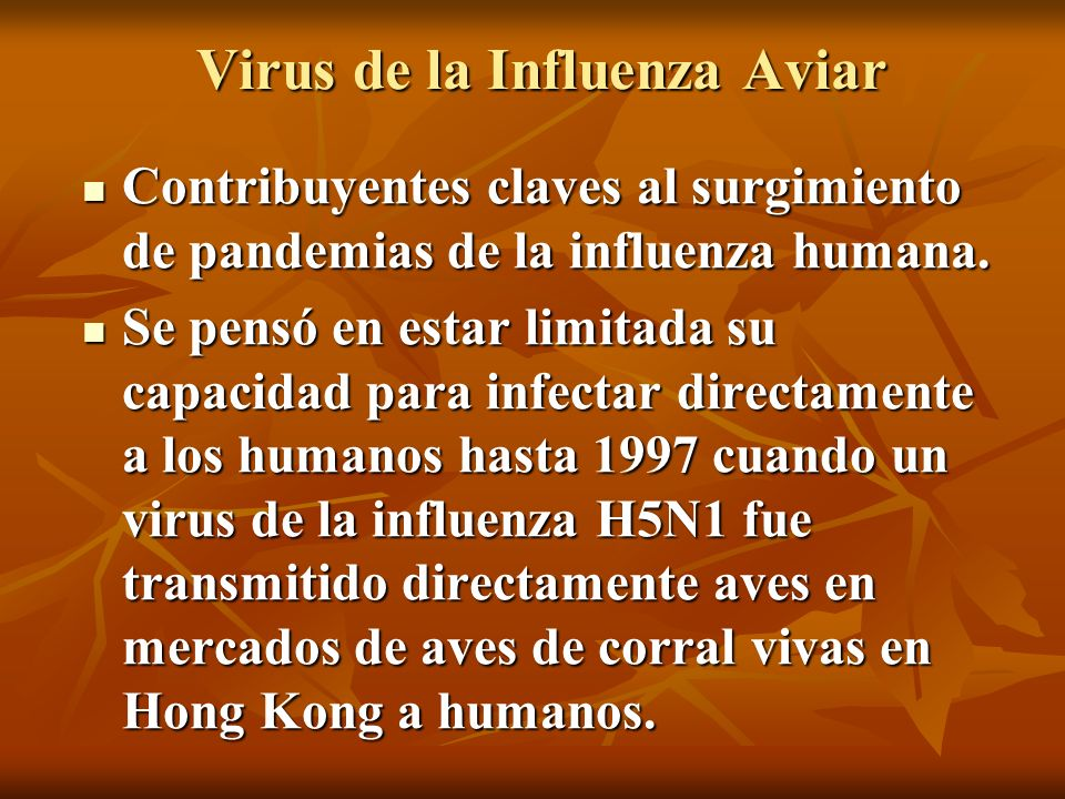 Virus de la Influenza Aviar